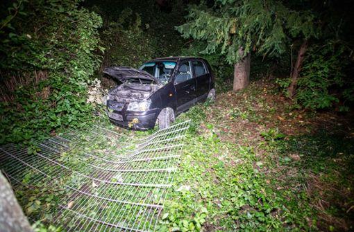 Betrunkener verfehlt Kurve und landet im Schlossgarten