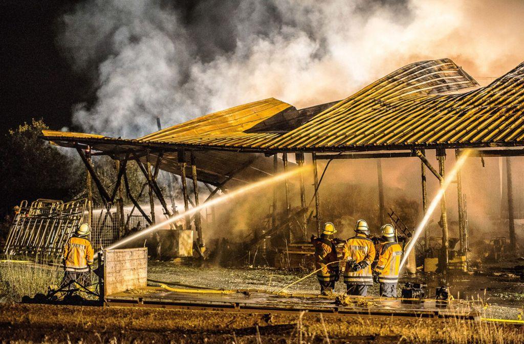 Der 54-Jährige konnte unter anderem Pferde, Ziegen und  Puten aus der brennenden Scheune retten. Foto: dpa/Ostalb Network