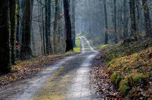 Waldwege mit Giftstoffen verseucht