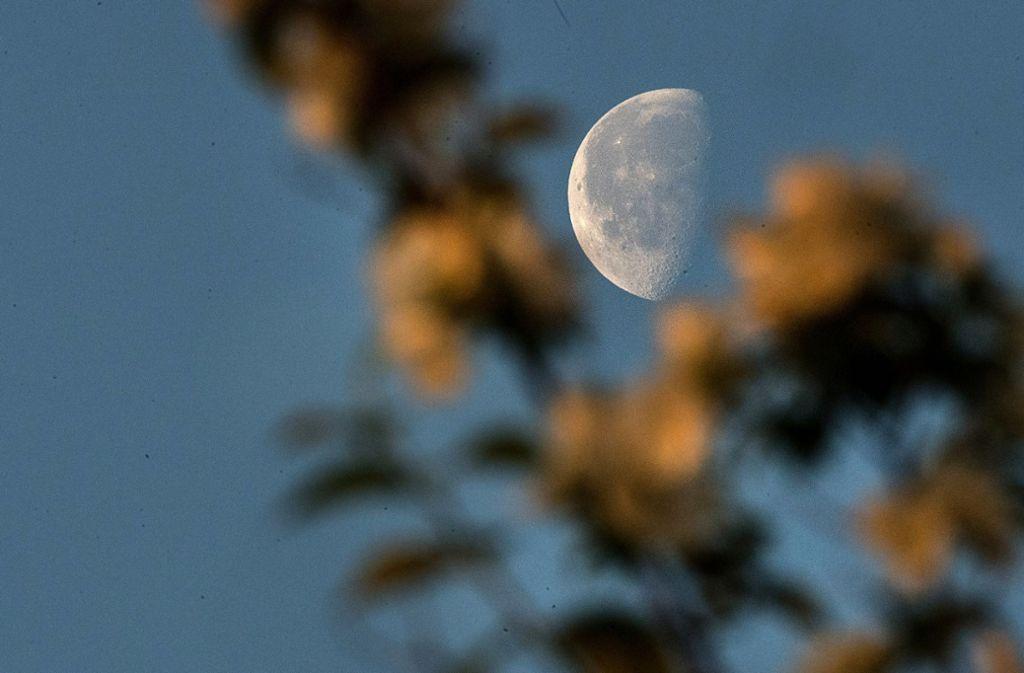 Mond in weiter Ferne: Das private US-Raumfahrtunternehmen SpaceX hat die für dieses Jahr angekündigte Mondumrundung mit zahlenden Weltraumtouristen einem Zeitungsbericht zufolge verschoben. Foto: dpa