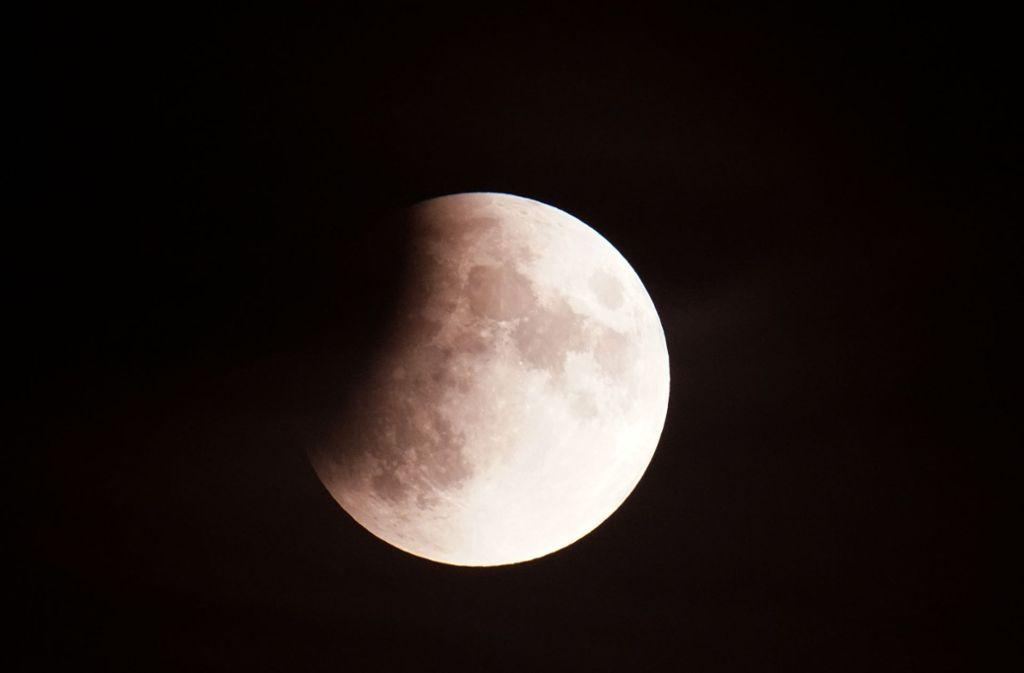 Auch in der Region wie hier in Stuttgart-Neugereut ließ sich der Mond im Kernschatten der Erde beobachten. Foto: Andreas Rosar Fotoagentur-Stuttg
