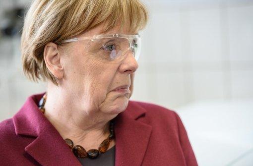 Kanzlerin Merkel wünscht sich Vielfalt im Spreisepla. (Archivfoto) Foto: Pool Afp