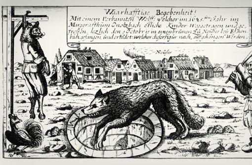 Den bösen Wolf gab es nicht nur im Märchen
