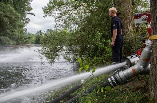 Gift erreicht Jagst im Kreis Heilbronn