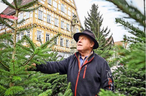 O Tannenbaum, du bist ein edler Zweig,...