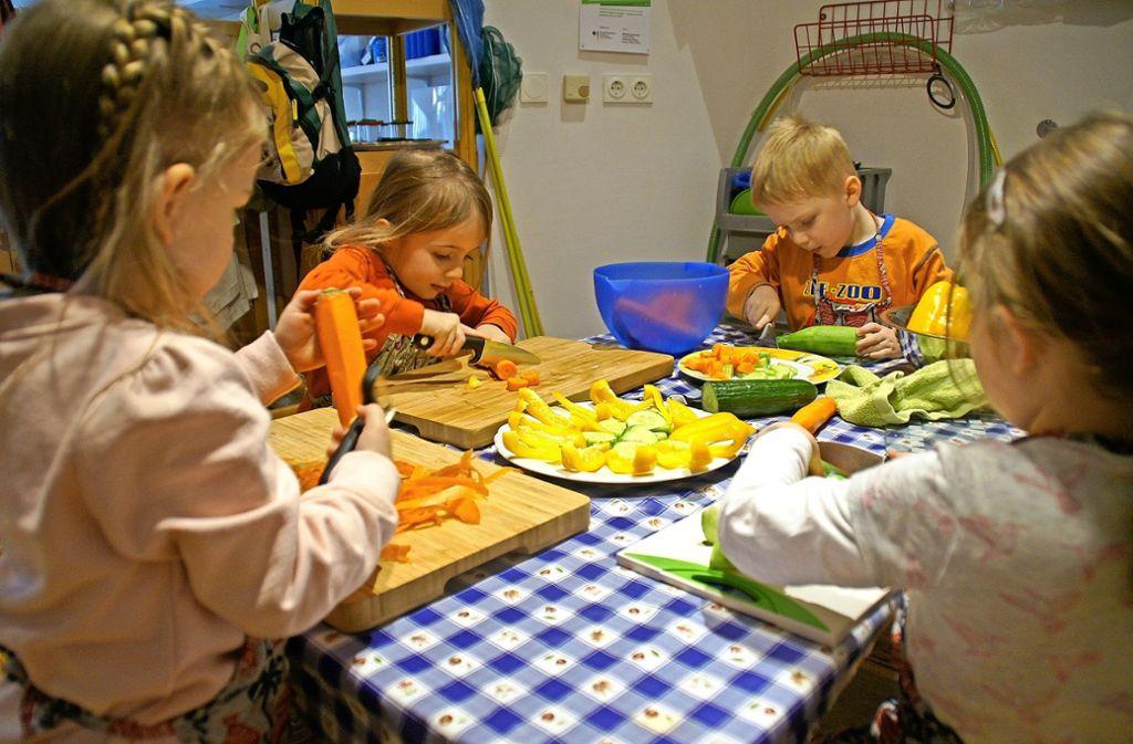 Selbst zubereitet schmecken auch die Pastinaken Erzieher der Kita Wichtelpark von der Sarah-Wiener-Stiftung in Sachen Ernährung geschult [StZ 09.02.2018]