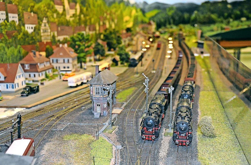 Im Maßstab 1:87 haben die Modelleisenbahner Bahnstrecken und Landschaft detailreich nachgebaut. Foto: Georg Linsenmann