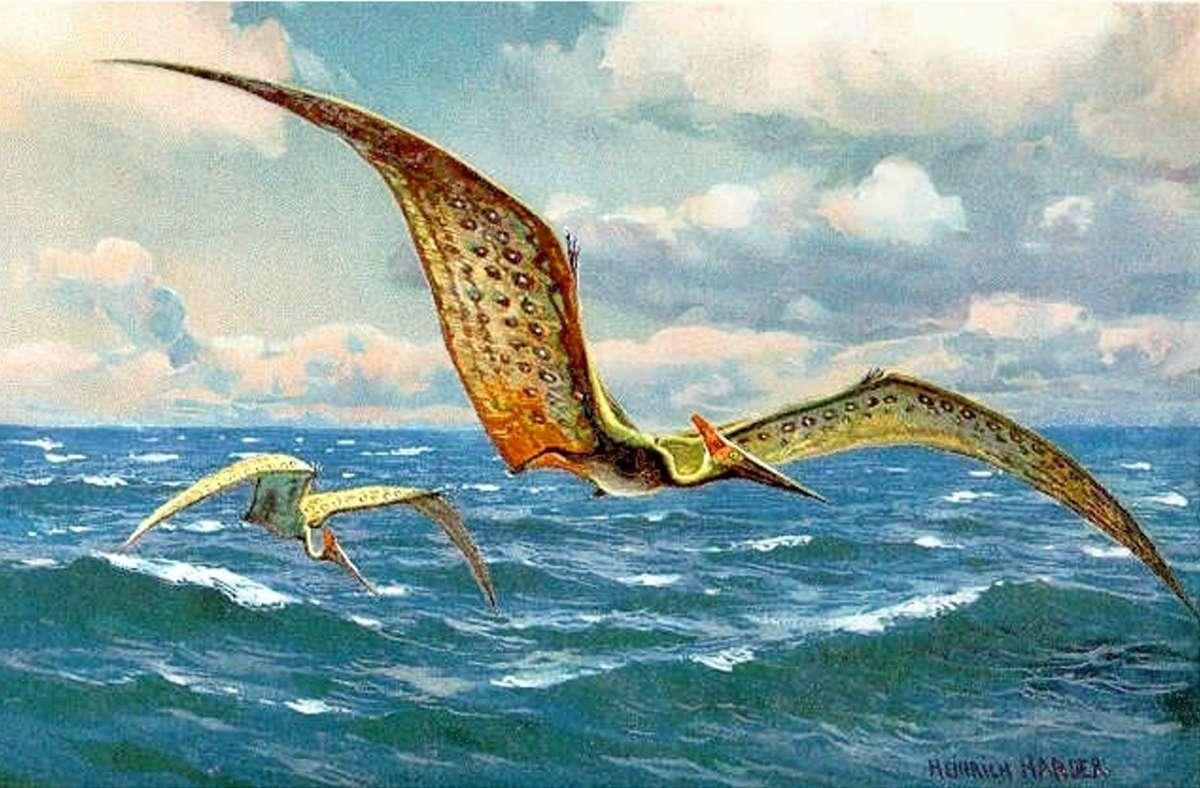 Darstellung eines Flugsauriers von Heinrich Harder aus dem Jahr 1916. Foto: Wikipedia commons/The Wonderful Paleo Art of Heinrich Harder