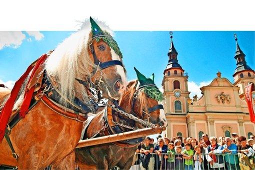 Kürzere Route für Pferdegespanne