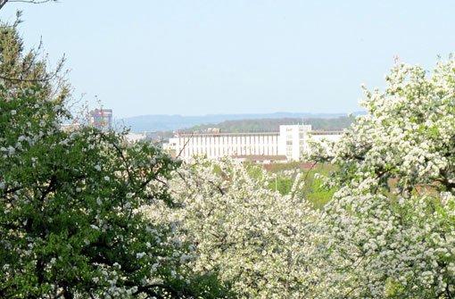 Stammheim: Gelebte Geschichte