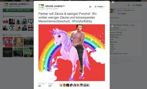 Die Grüne Jugend reagiert mit dem Bild eines pinkfarbenen Einhorns auf den Vorstoß von Boris Palmer. Foto: Screenshot StZ