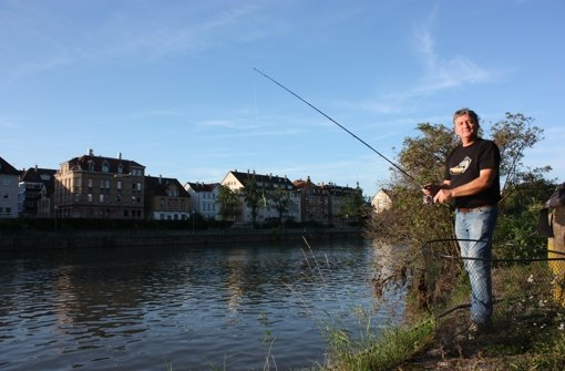 Fische aus dem Neckar sind lecker