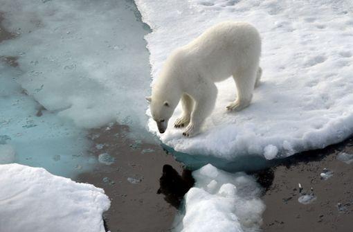 Klima-Krise, Populisten und billiges Geld