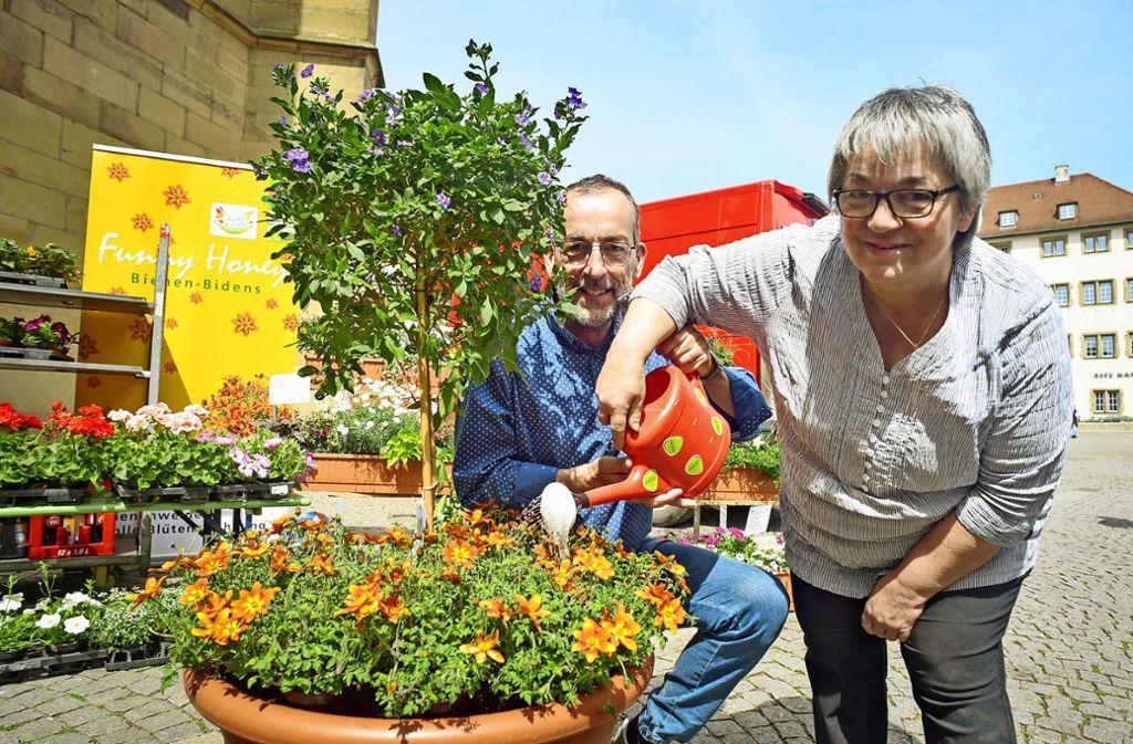 Volker Kugel, Direktor des Blühenden Barocks, und Kreisgärtnermeisterin Margrit Günther. Foto: Lg/Max Kovalenko