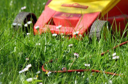 Dreiste Diebe nehmen Rasenmäher mit