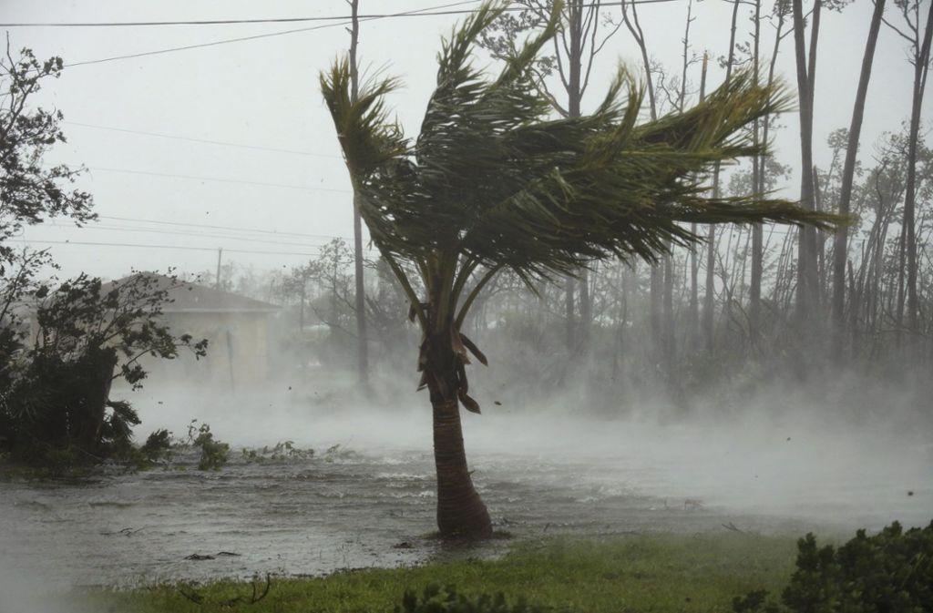 """Hurrikan """"Dorian"""" machte die Bahamas zur Gefahrenzone für Mensch und Tier. Foto: dpa"""