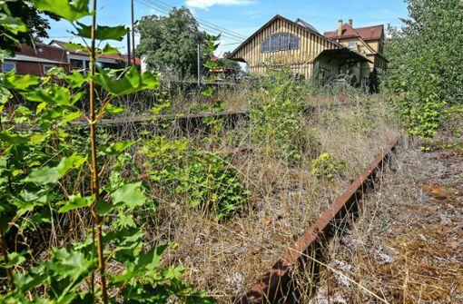 Déjà-vu im Streit um die Stadtbahn