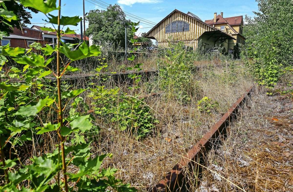 Die stillgelegte Bahnstrecke zwischen Markgröningen und Ludwigsburg soll reaktiviert werden. Foto: factum/Granville/Simon Granville/factum