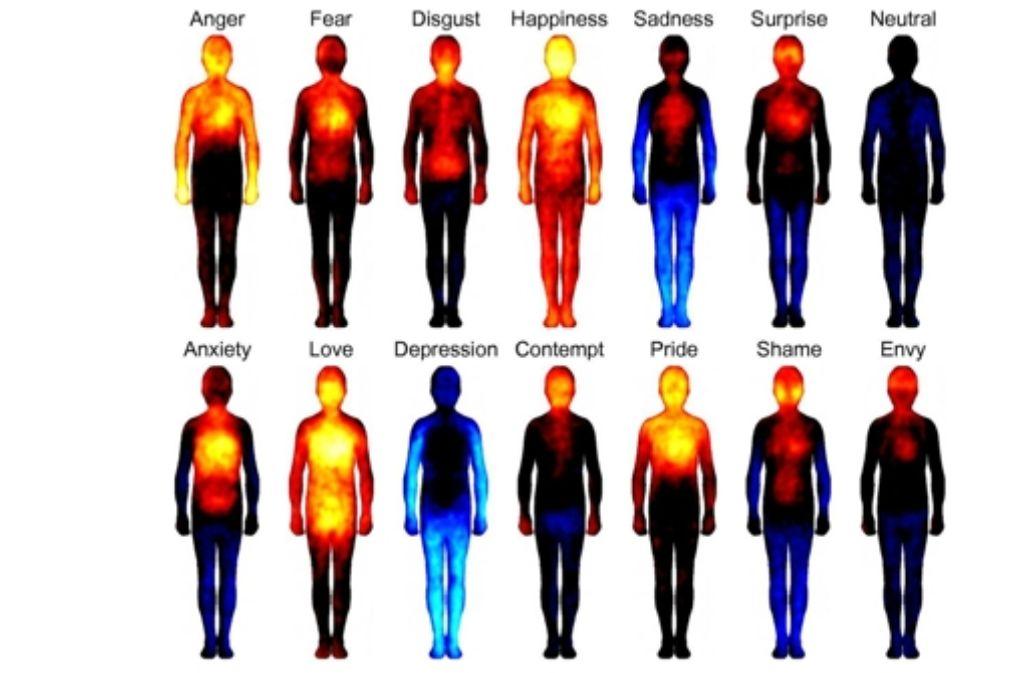Der finnische Hirnforscher Lauri Nummenmaa hat seine Versuchspersonen gefragt, wo sie bestimmte Emotionen im Körper spüren. Das Bild zeigt die Ergebnisse: Rot und Gelb zeigen erhöhte Aktivität an, Blau steht für verringerte Aktivität. Die Emotionen in der oberen Reihe: Wut, Angst, Ekel, Freude, Traurigkeit, Überraschung, keine Emotion. Die Emotionen in der unteren Reihe: Sorge, Liebe, Niedergeschlagenheit, Abscheu, Stolz, Scham, Neid. Diese Studie passt zur Theorie des Neurowissenschaftlers António Damásio, der diese Woche an der Uni Tübingen zu Gast ist. Foto: PNAS