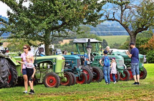 Mit dem Traktor über die Feldwege getuckert