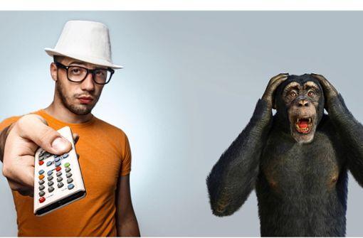 Jeder Affe zählt
