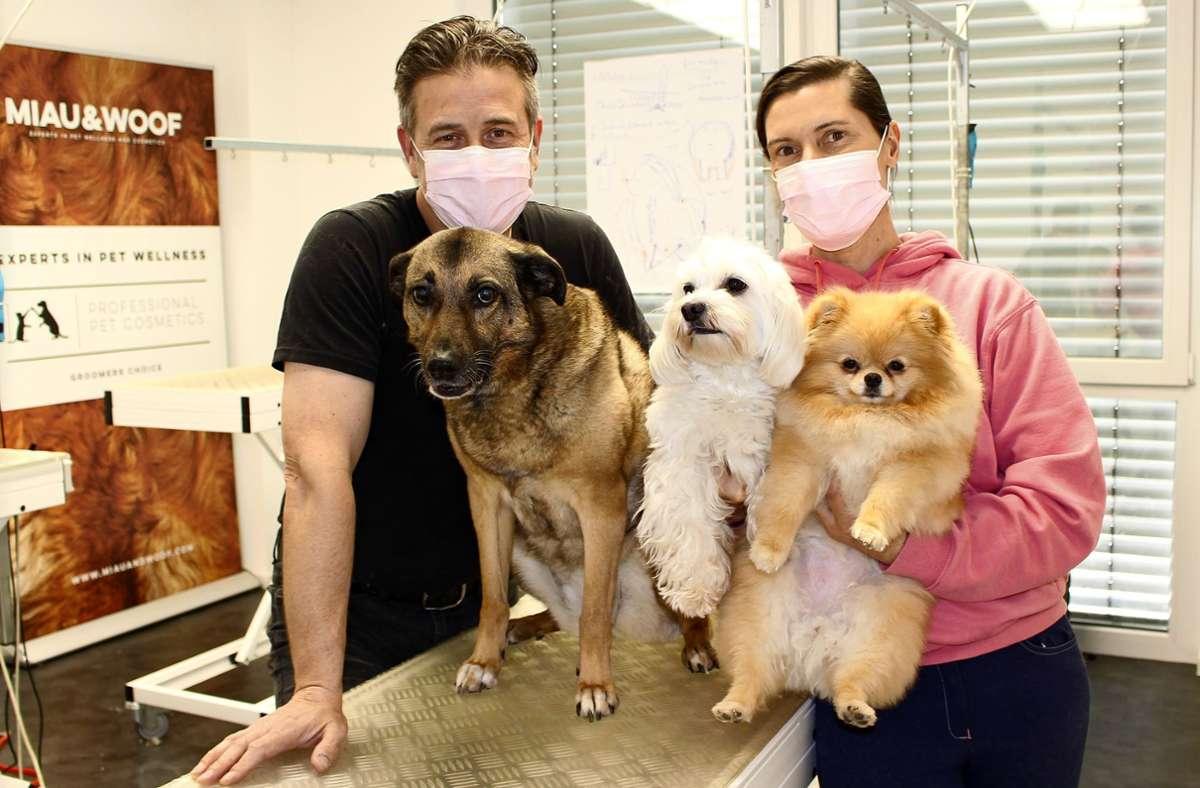 Jean-Fred Noel, der Inhaber des Hundesalons Dog Beauty Lounge in Sielmingen, mit seiner Frau Sarah Noel Dolbeau und den drei gemeinsamen Hunden. Foto: Caroline Holowiecki