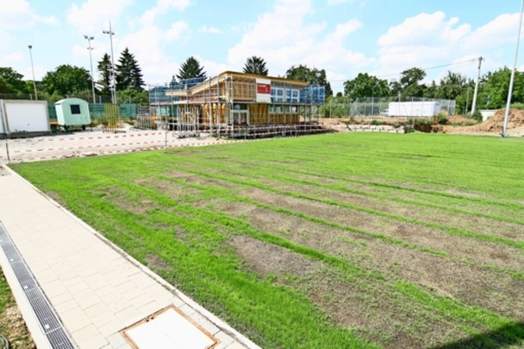Der Rasen des neuen Faustballfeldes des TV Stammheim wächst und gedeiht, und das neue Clubhaus steht im Rohbau Foto: Chris Lederer