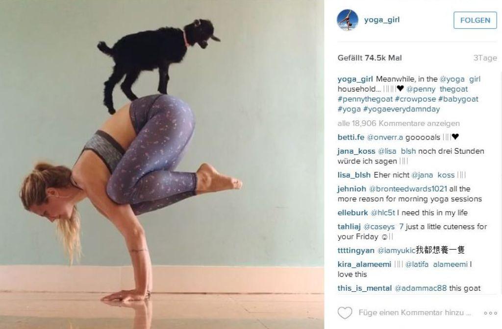 Rachel Brathen setzt beim Yoga auf die Untersützung ihrer Ziege Penny Lane. Foto: Screenshot Instagram / Yoga Girl