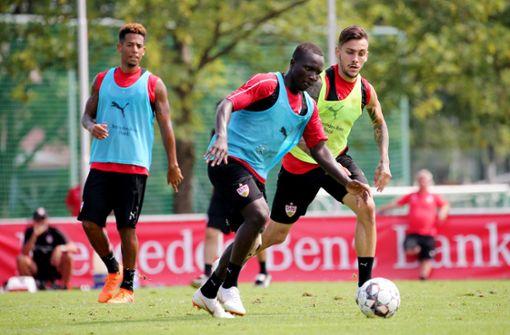 Das VfB-Prinzip: Neuer Trainer, neues Glück