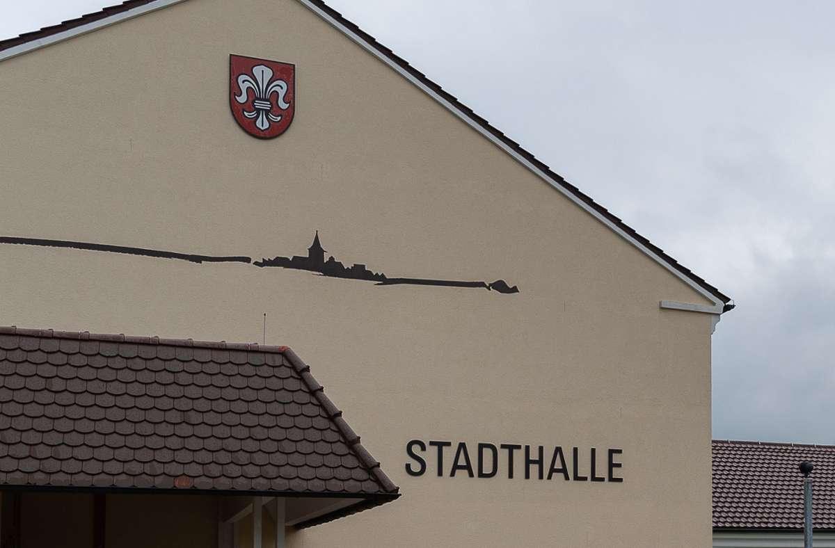 In der Holzgerlinger Stadthalle werden 5000 Pikse gesetzt. Foto: Wolfgang Frank//Eibner-Pressefoto