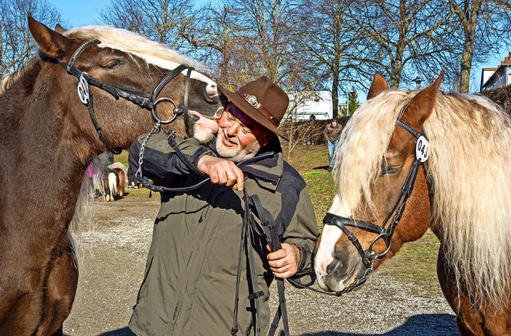 Harmut Fürst aus Aalen züchtet die Rasse Schwarzwälder Kaltblut. Foto: factum/Weise