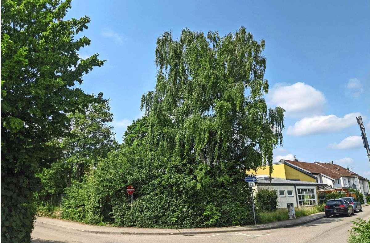 Das Kindergartengebäude steht schon seit Monaten leer. Foto: Jürgen Brand