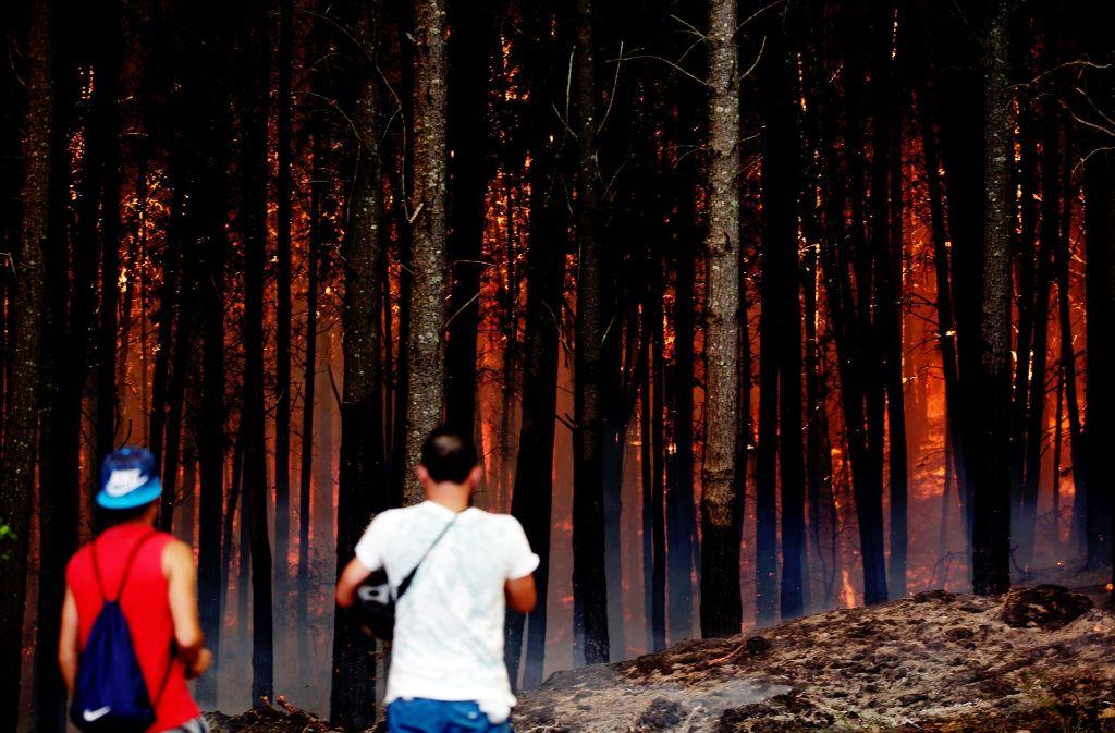 Die Waldbrände in Chile breiten sich immer weiter aus. Foto: Agencia Uno