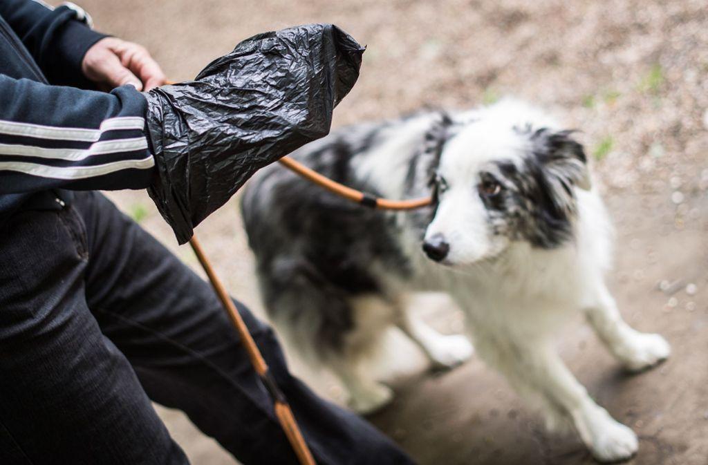 Ob sich in dem Mülleimer Tüten mit Hundekot befanden, ist nicht bekannt. (Symbolbild) Foto: picture alliance / dpa/Maja Hitij