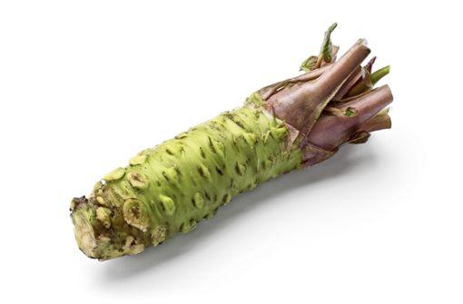 Warum Wasabi fast immer eine Fälschung ist