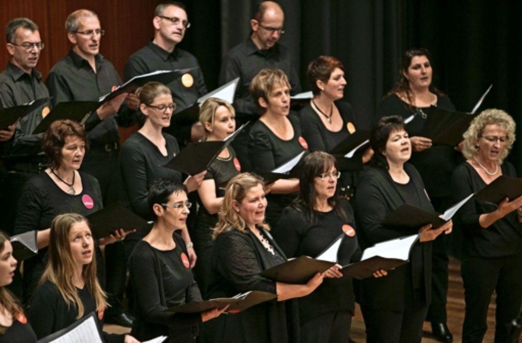 """Auch der Junge Chor """"elchorado"""" der Liedertafel Elchingen hat in  der  Stadthalle Wettkampferfahrung gesammelt. Foto: Michael Steinert"""