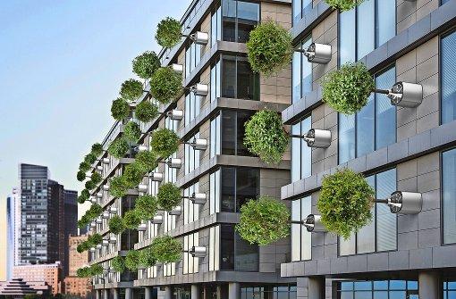 Grün ist in – aber weniger bei den Investoren