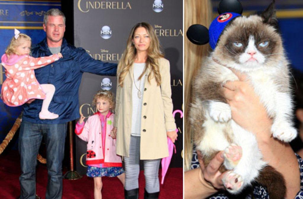 Grumpy Cat schaut missmutig in die Kamera, während die Familie von US-Schauspieler Eric Dane sich ganz offensichtlich auf die Cinderella-Premiere freut. Foto: dpa