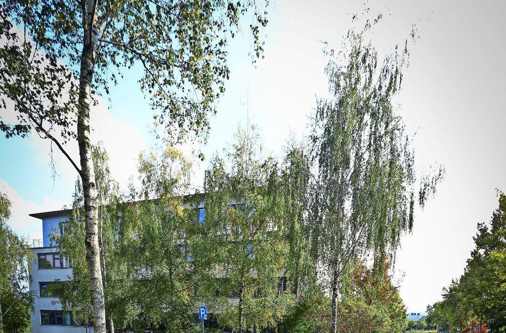 In der Ditzinger Dieselstraße  soll ein Container aufgestellt werden. Foto: factum/Granville