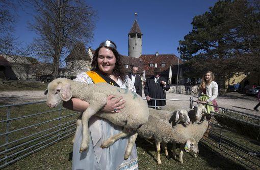 Neue Lammkönigin gekrönt