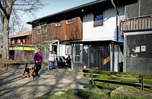 Tierheim und  Nachbar einigen sich