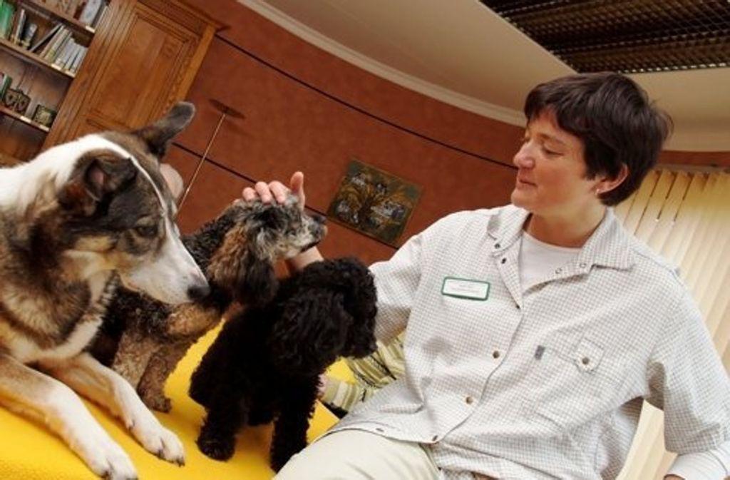 Sozialpädagogin Anette Bull mit ihren Therapie-Hunden. Foto: Anette Bull