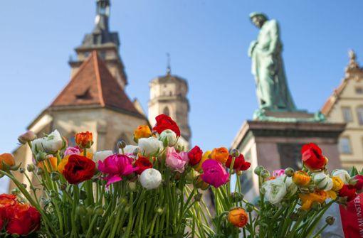 Der Samstag verspricht bis zu 20 Grad in Stuttgart