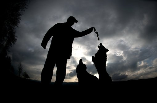 Ein Hundebesitzer soll in Leimen ein Kind geschubst haben. Foto: dpa