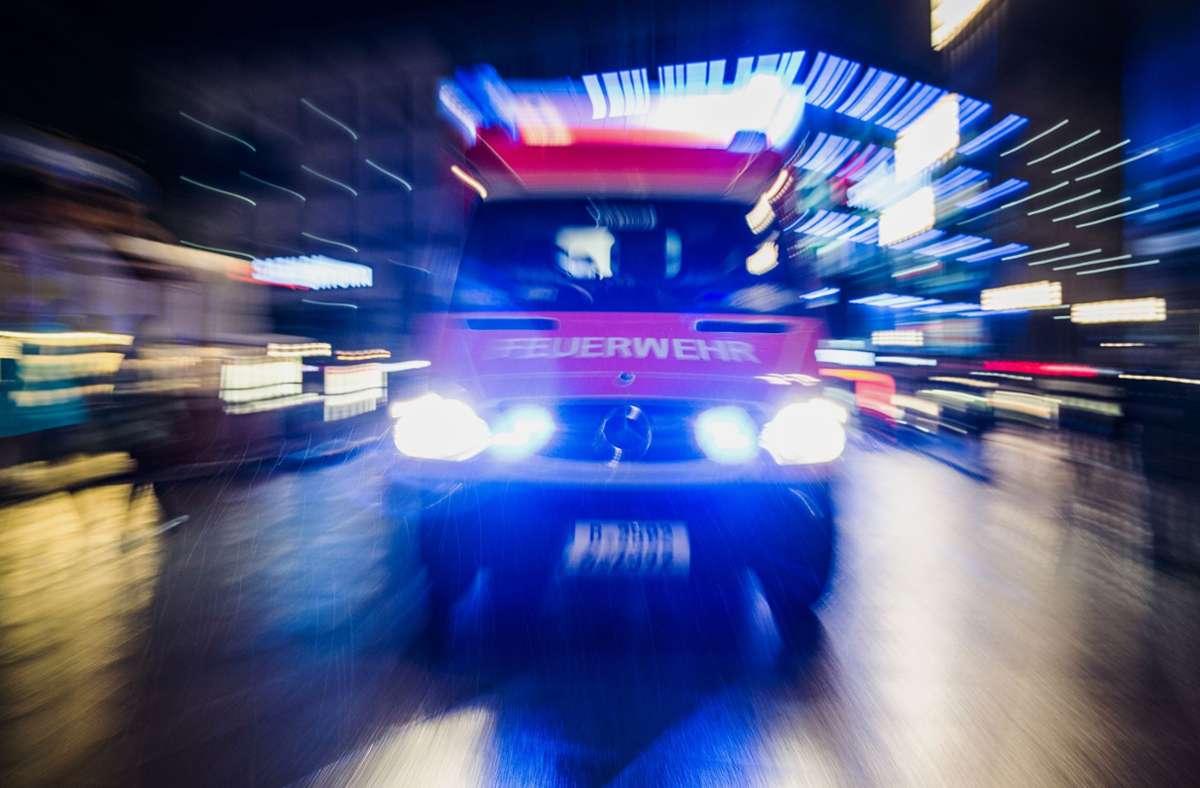 Ein Fahrradfahrer wurde bei dem Unfall am Dienstagmorgen schwer verletzt. (Symbolbild) Foto: picture alliance / dpa/Paul Zinken