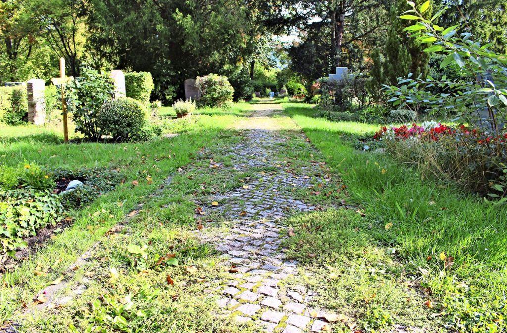 Auf vielen Wegen des Friedhofs sprießt das Unkraut. Foto: Caroline Holowiecki