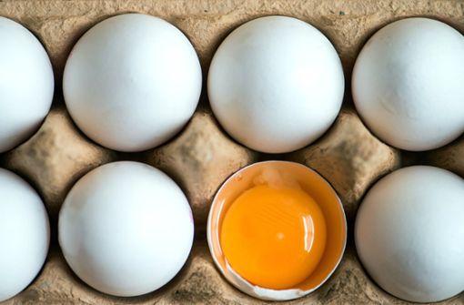 Eier in vielen Bundesländern zurückgerufen