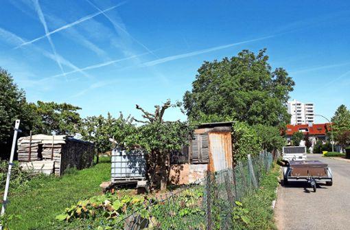 Naturnahes Wohnen im Fellbacher Süden