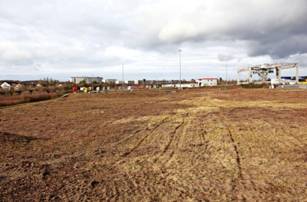 Auf diesem Gelände  am Umschlagbahnhof will Aurelis  ihr Vorhaben   errichten. Links sieht man die Stammheimer Wohnhäusr,  im Hintergrund die Gebäude der  JVA. Foto: Chris Lederer