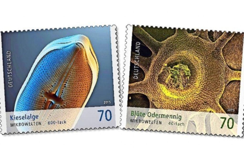 Für jeweils 70 Cent kann Manfred P. Kage zwei seiner Mikrofotografien künftig in alle Welt verschicken. Foto: Kage Mikrofotografie/